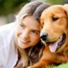 girl-and-dog-260x170-2a049efb18097cbc7c14445cbfa7a843a1891b6c